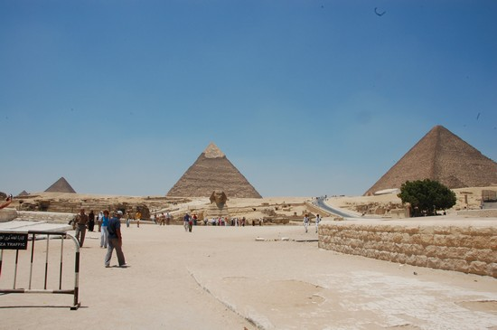 48762_la_piana_di_giza_giza