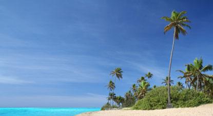 9160_vanua_levu_spiaggia_bianca