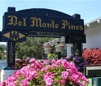 Hotel: Del Monte Pines - FOTO 1