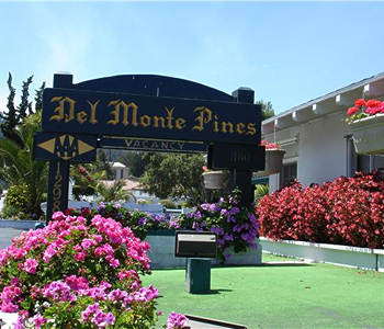 Hotel: Del Monte Pines - FOTO 2