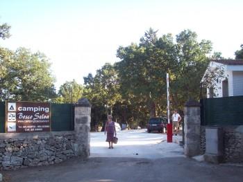 Hotel: Villaggio Camping Bosco Selva - FOTO 1