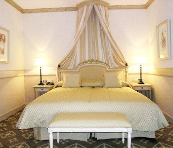Hotel: Palacio Eugenia de Montijo - FOTO 5