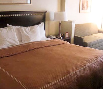 Hotel: Comfort Suites-DIA - FOTO 4