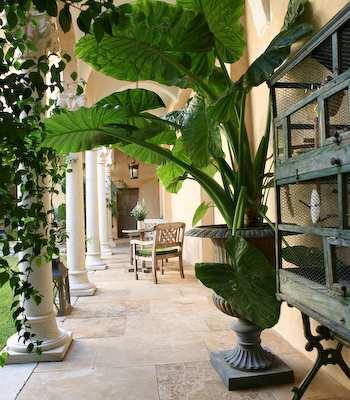 Hotel: Jardins Secrets - FOTO 2