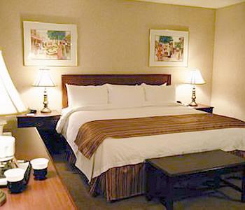 Hotel: Best Western Hotel Europa Downtown - FOTO 3