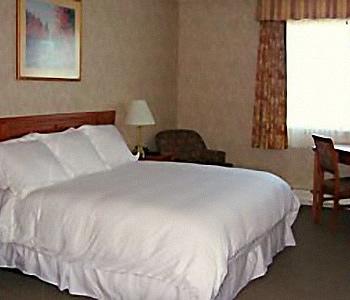 Hotel: Auberge Universel Montréal - FOTO 3