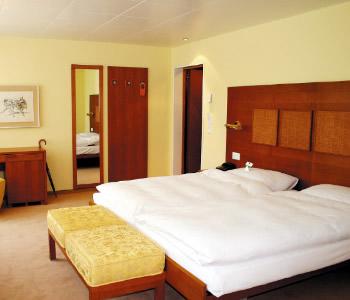 Hotel: Engimatt - FOTO 4