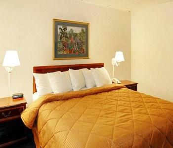 Hotel: Comfort Inn Arlington Blvd/DC Gateway - FOTO 2