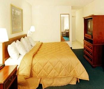 Hotel: Comfort Inn Arlington Blvd/DC Gateway - FOTO 4
