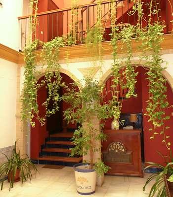 Apartment: Apartamentos Suites Santa Cruz - FOTO 1