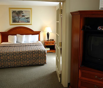 Hotel: Holiday Inn Charlotte Airport - FOTO 3