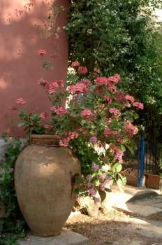 Landhaus: Duca di Castelmonte - FOTO 2