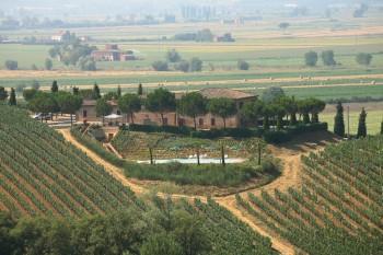 Farm Home: Casa di Bacco - FOTO 2