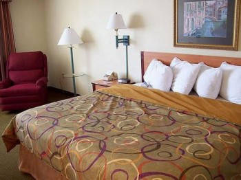 Hotel: Holiday Inn & Austin Conference Center - FOTO 2