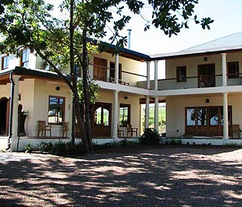 Guest House: Lovane Boutique Wine Estate and Guest House - FOTO 2