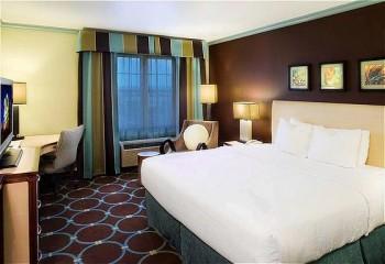 Hotel: Holiday Inn Sarasota-Lakewood Ranch - FOTO 2