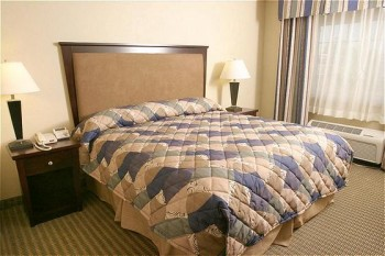 Hotel: Holiday Inn Express Hotel & Suites Wheat Ridge - Denver West - FOTO 2