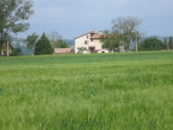 Bed and Breakfast: Fontecese - FOTO 1