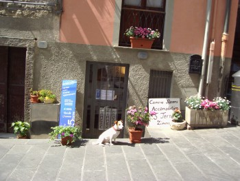 Chambre chez l 39 habitant da silvia riomaggiore - Chambre chez l habitant italie ...
