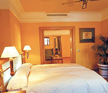 Hotel: Hotel Spa Senator España - FOTO 3