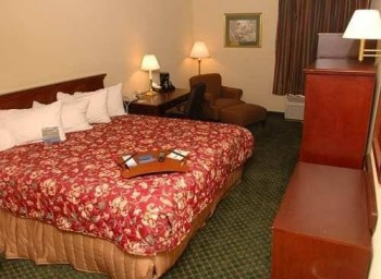 Hotel: Holiday Inn Express - Medical Center Midtown - FOTO 2