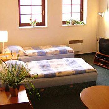 Hotel: Aparthotel Šumava 2000 - FOTO 3