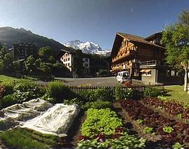 Hotel: Familienhotel Edelweiss - FOTO 1