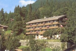 Hotel: Hotel Jungfraublick - FOTO 1