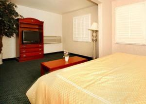 Hotel: Comfort Inn & Suites Hollywood - FOTO 4