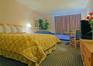 Hotel: Comfort Inn Winnipeg Airport - FOTO 4