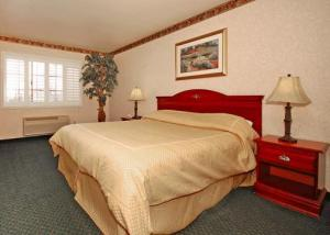 Hotel: Comfort Inn & Suites Hollywood - FOTO 2