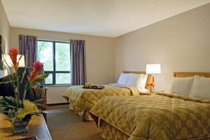 Hotel: Comfort Inn Saint John - FOTO 4