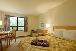 Hotel: Comfort Inn Saint John - FOTO 3