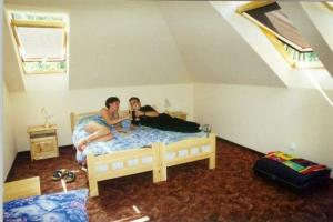 Hostel: Balaton Pension and Guesthouse - FOTO 3