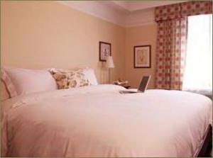 Hotel: Le St-Martin Hotel & Suites - FOTO 9