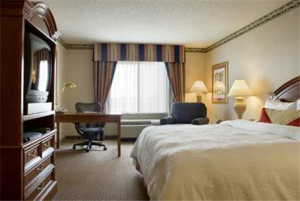Hotel: Hilton Garden Inn Minneapolis Maple Grove - FOTO 2