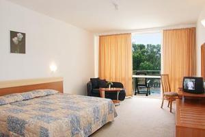 Hotel: Hotel Complex Rodopi, Zvete, Flora Park - FOTO 2