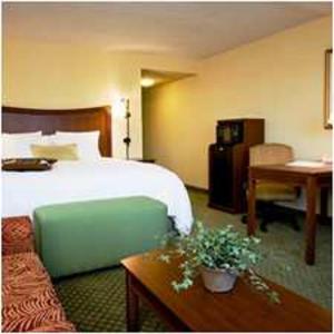 Hotel: Hampton Inn & Suites Fort Myers-Colonial Boulevard - FOTO 3