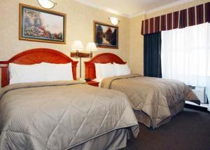 Hotel: Comfort Inn Chelsea - FOTO 5