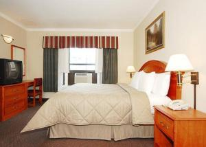 Hotel: Comfort Inn Chelsea - FOTO 2