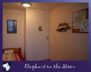 Hostel: Elephant On The Moon - FOTO 3