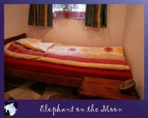 Hostel: Elephant On The Moon - FOTO 2