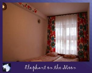 Hostel: Elephant On The Moon - FOTO 4