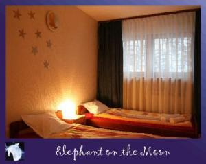 Hostel: Elephant On The Moon - FOTO 7