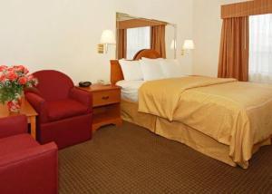 Hotel: Comfort Suites Galleria - FOTO 2