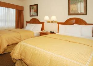 Hotel: Comfort Suites Galleria - FOTO 5