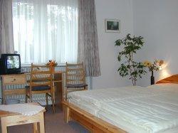 Jugendherberge: Hotel Herrenhof - FOTO 3