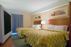 Hotel: Comfort Inn Gatineau - FOTO 5