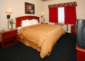 Hotel: Comfort Suites Albany - FOTO 4