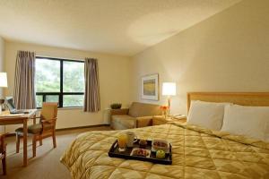 Hotel: Comfort Inn Laval - FOTO 3